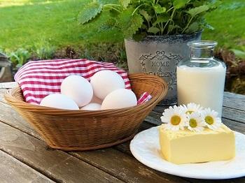 Faire le plein en calcium : les aliments à privilégier