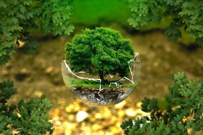 Nos bonnes raisons de protéger l'environnement