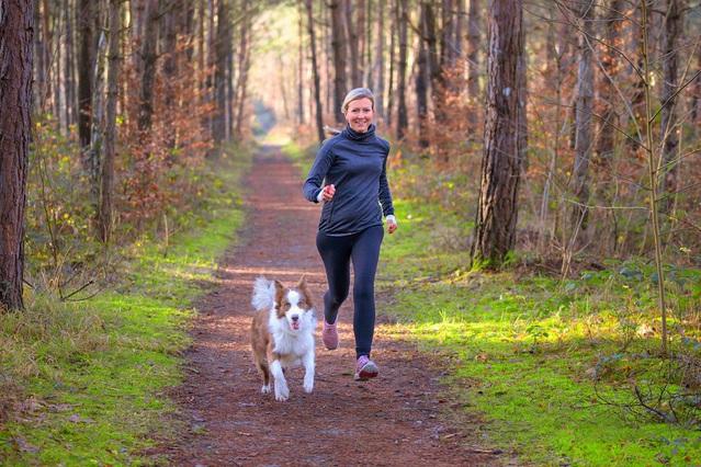 10 exercices sportifs à faire avec votre chien