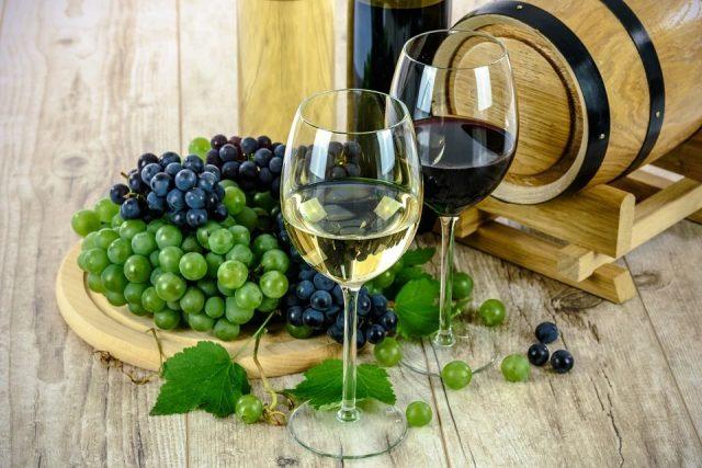 Séjour œnologique : les plus belles régions viticoles de la France