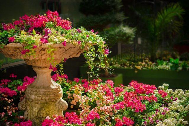 Décoration de jardin : 5 astuces pour l'enjoliver
